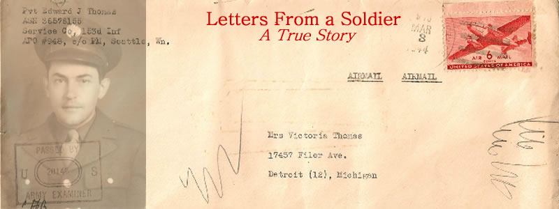 Letters From A Soldier - Edward J. Thomas