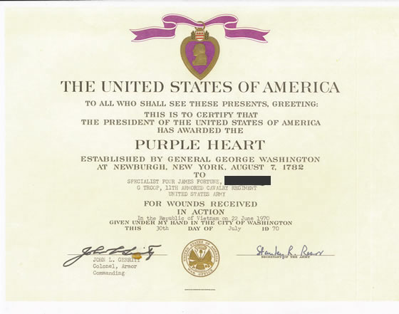 Purple heart award certificate vietnam war 1950s 1970s for Purple heart citation template